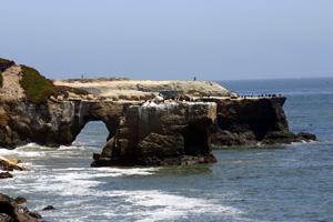 Geology in Santa Cruz
