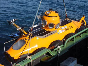 Delta submersible