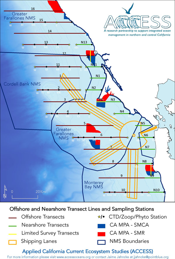 ACCESS Transect Lines