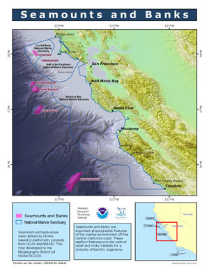 Seamounts and Banks_ map