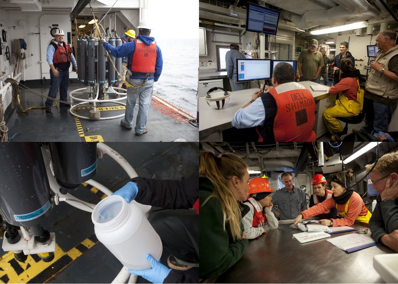 Clockwise from upper left: Shimada crew prepare deployment of CTD; scientists observing the live depth profile of the CTD; science crew planning trawl assignments; obtaining a water sample from a 12 liter bottle on the CTD. (photos by Chad King)