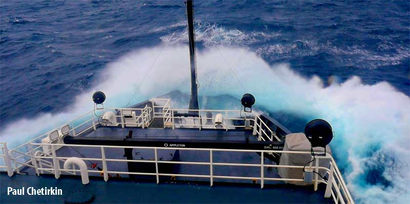 Try to count marine mammals when your ship is tunneling under 15 foot waves! Don't worry, we're perfectly safe!