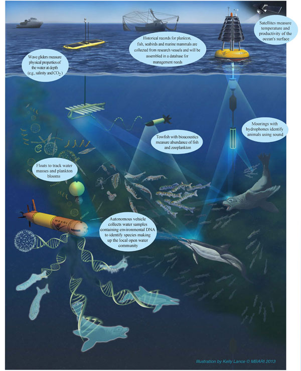 This figure represents many of the tools that are and will be a part of the Marine Biodiversity Observation Network (MBON). This cruise is employing many of these and additional tools.
