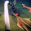 Pilots deftly use the ROV's manipulator arm to grasp a suction hose to retrieve, then gently place a seastar upon the polyps of a bamboo coral. (Photo: MBARI)